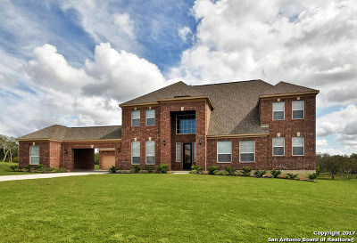 Medina County Single Family Home For Sale: 257 Sittre Drive