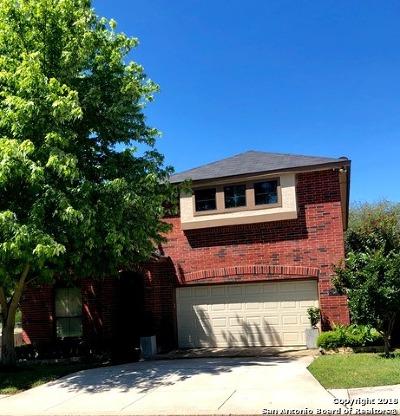 Boerne TX Single Family Home New: $380,000
