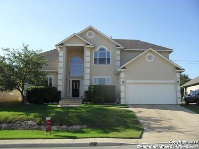San Antonio Single Family Home Price Change: 531 Bosque Vista