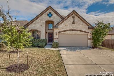 San Antonio Single Family Home New: 215 Epcot