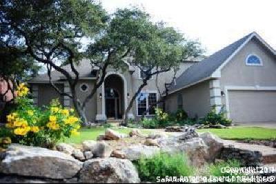 San Antonio Single Family Home New: 2327 Fountain Way