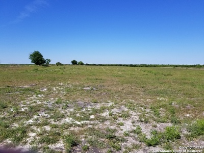 Guadalupe County Farm & Ranch For Sale: 7343 Fm 1044