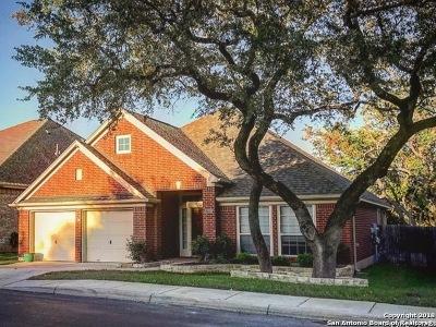 San Antonio Single Family Home For Sale: 27218 Spiral Canyon