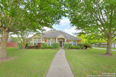 Seguin Single Family Home For Sale: 165 Las Brisas Blvd