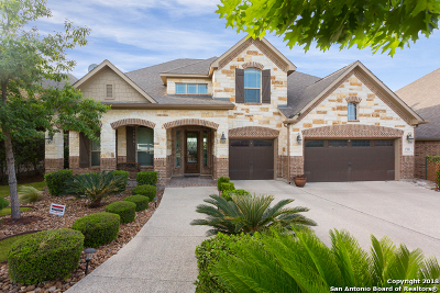 San Antonio Single Family Home For Sale: 17123 Turin Ridge