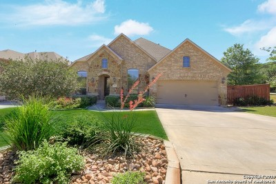 Stonewall Estates Single Family Home For Sale: 21802 Rugosa Hill