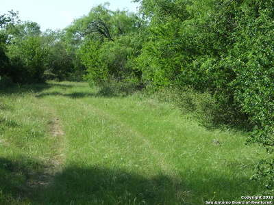 Farm & Ranch For Sale: 2695 County Road 651