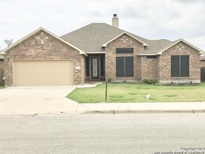 Single Family Home For Sale: 2223 Sun Pebble Way