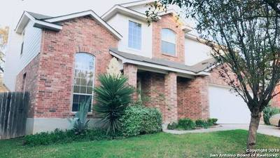 Helotes Single Family Home For Sale: 10511 Cenizo Field