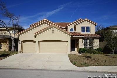 San Antonio Single Family Home For Sale: 2807 Winter Gorge
