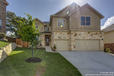 Bexar County Single Family Home For Sale: 24230 Artisan Gate
