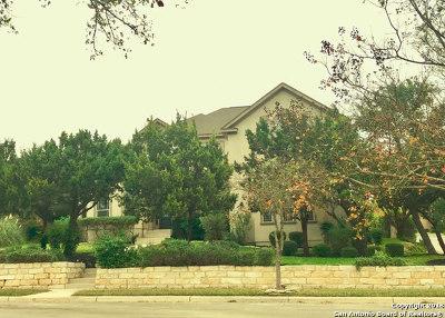 San Antonio Single Family Home For Sale: 24903 Birdie Ridge