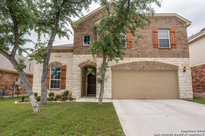 Helotes Single Family Home For Sale: 10730 Cactus Way