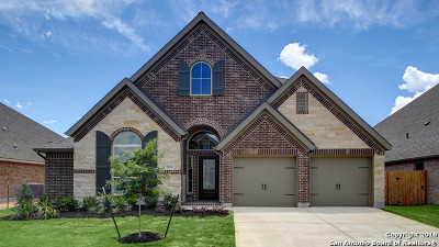 Seguin Single Family Home For Sale: 2924 Glen View