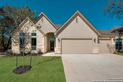 Boerne Single Family Home For Sale: 27025 Daffodil Place