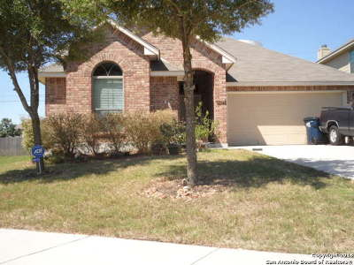 Cibolo Single Family Home Back on Market: 405 Cactus Flower
