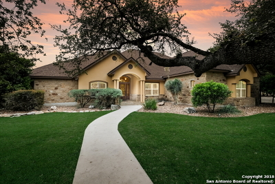 Bexar County, Comal County, Guadalupe County Single Family Home For Sale: 26634 Forest Link