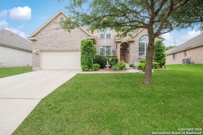 Helotes Single Family Home For Sale: 9227 Holly Star