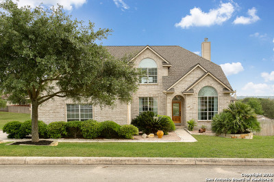 Helotes Single Family Home For Sale: 9218 Deborah Sue