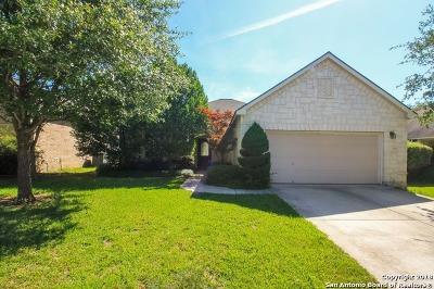 San Antonio Single Family Home Back on Market: 1335 Stetson Green
