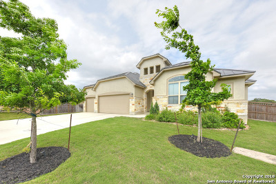 New Braunfels Single Family Home For Sale: 852 Boomerang Ct