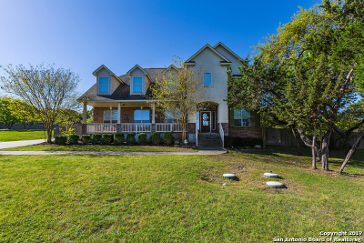 Boerne Single Family Home For Sale: 9118 Overlook Ridge