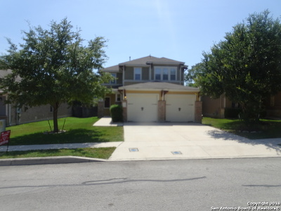 Boerne Single Family Home For Sale: 120 Saddle Horn