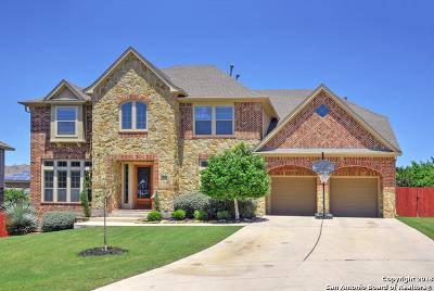 San Antonio TX Single Family Home Back on Market: $489,987
