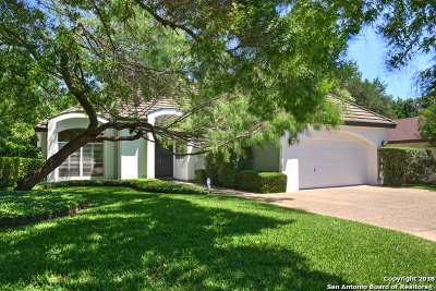San Antonio Single Family Home For Sale: 2617 Country Hollow St