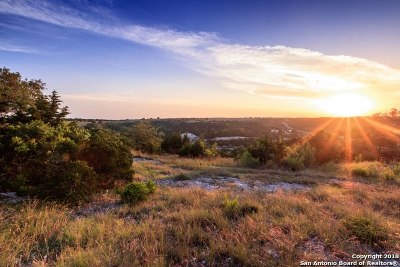 Boerne Residential Lots & Land For Sale: 206 Paradise Point Dr
