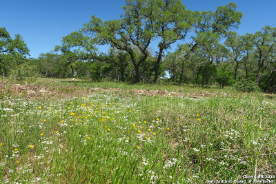 Boerne Residential Lots & Land For Sale: 26960 Pecan Bluff
