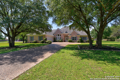 New Braunfels Single Family Home For Sale: 2403 Welsch Ln