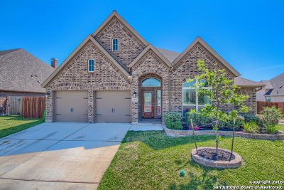 Seguin Single Family Home For Sale: 2943 Coral Sky