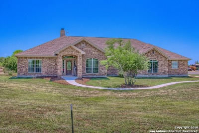 New Braunfels Single Family Home For Sale: 342 Schumans Beach Rd