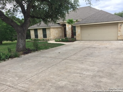 Single Family Home For Sale: 1293 Meadow Stream Dr