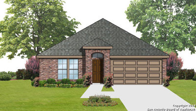 Seguin Single Family Home For Sale: 1005 Clarkston Dr