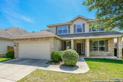 Single Family Home For Sale: 17027 Darlington Run