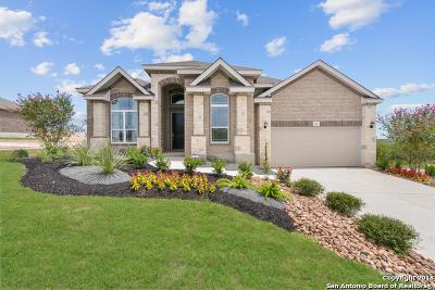 Bexar County Single Family Home New: 13547 Falls Summit