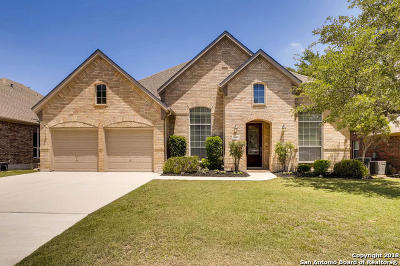 San Antonio Single Family Home Price Change: 2531 Portola Vw