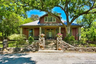 Boerne Single Family Home For Sale: 4 Hillview Ln
