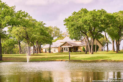 Guadalupe County Farm & Ranch For Sale: 195 Birdwell Rd