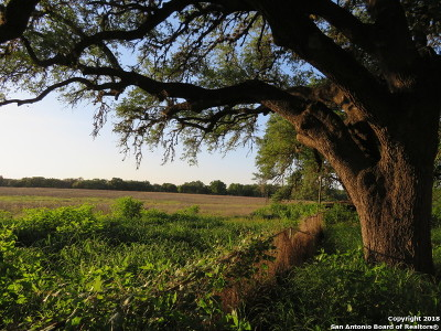 Atascosa County Farm & Ranch For Sale: 792 Palo Alto Dr