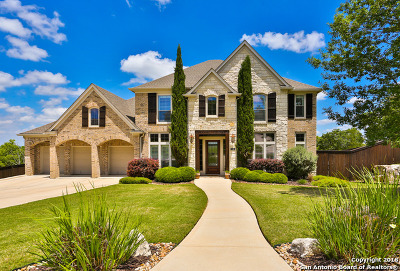 Boerne Single Family Home For Sale: 9043 Woodland Trace