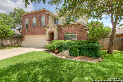 Helotes Single Family Home For Sale: 9320 Trailing Fern