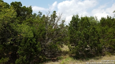 New Braunfels Residential Lots & Land New: 1105 Happy Hollow Dr