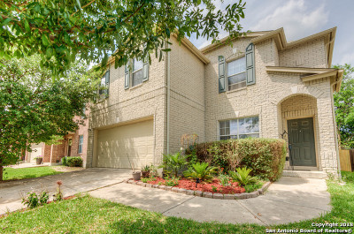 San Antonio Single Family Home New: 11111 Andover Peak
