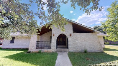 Hollywood Park Single Family Home For Sale: 119 Avenida Del Sol