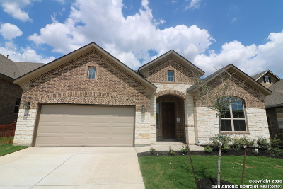 San Antonio Single Family Home New: 21022 Amalfi Oaks