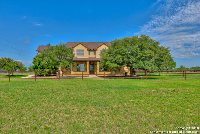 Single Family Home For Sale: 18795 S Luckey Rd