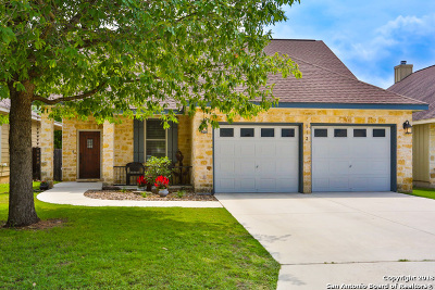 Boerne Single Family Home New: 113 Serenity Dr